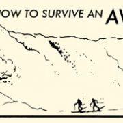 avalanche_survive
